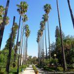 По паркам и набережной Палермо
